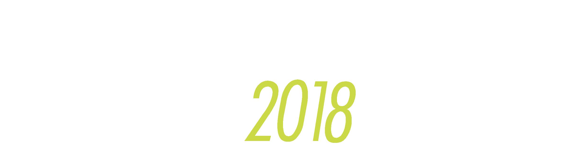 Sommer Fußballtrainingslager Peine 2018